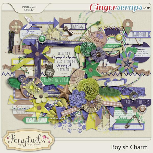 ponytails_BoyishCharm_elements