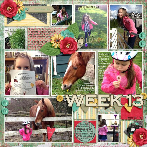 week13_WT-AnExtLife(Pocketful2)-web