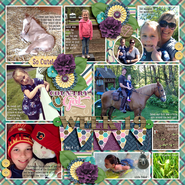 week19_CountryGirl(Pocketful3)-web