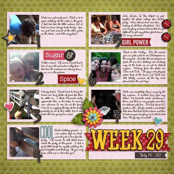 week29_BG-morespicethansugar(SWL)-web