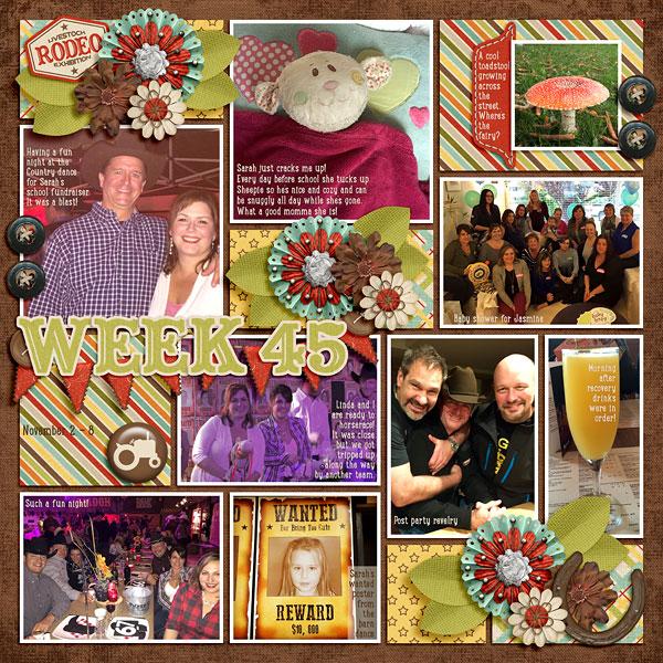week45_CountyFair(Pocketful2)-web