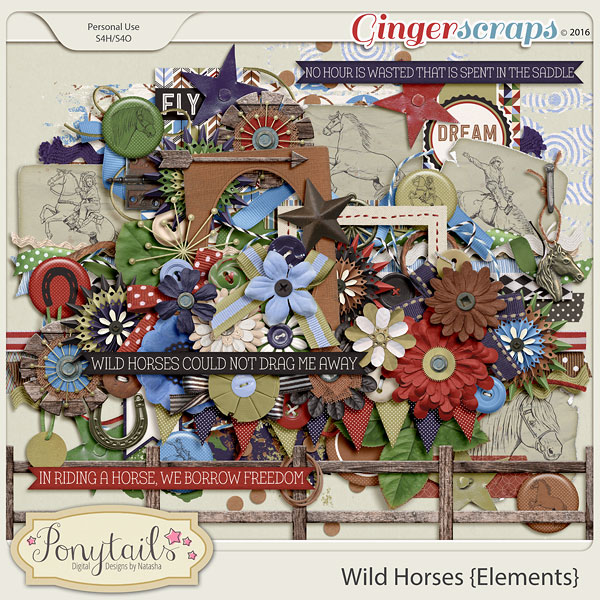 ponytails_WildHorses_elements