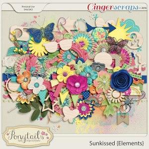 ponytails_Sunkissed_elements